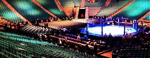 1258 ufc contenders experience