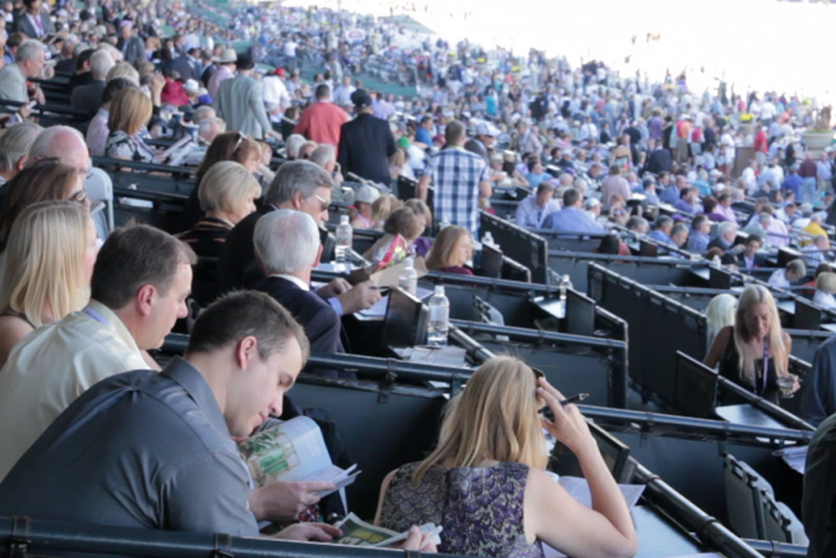 crowd at the breeders cup world championships