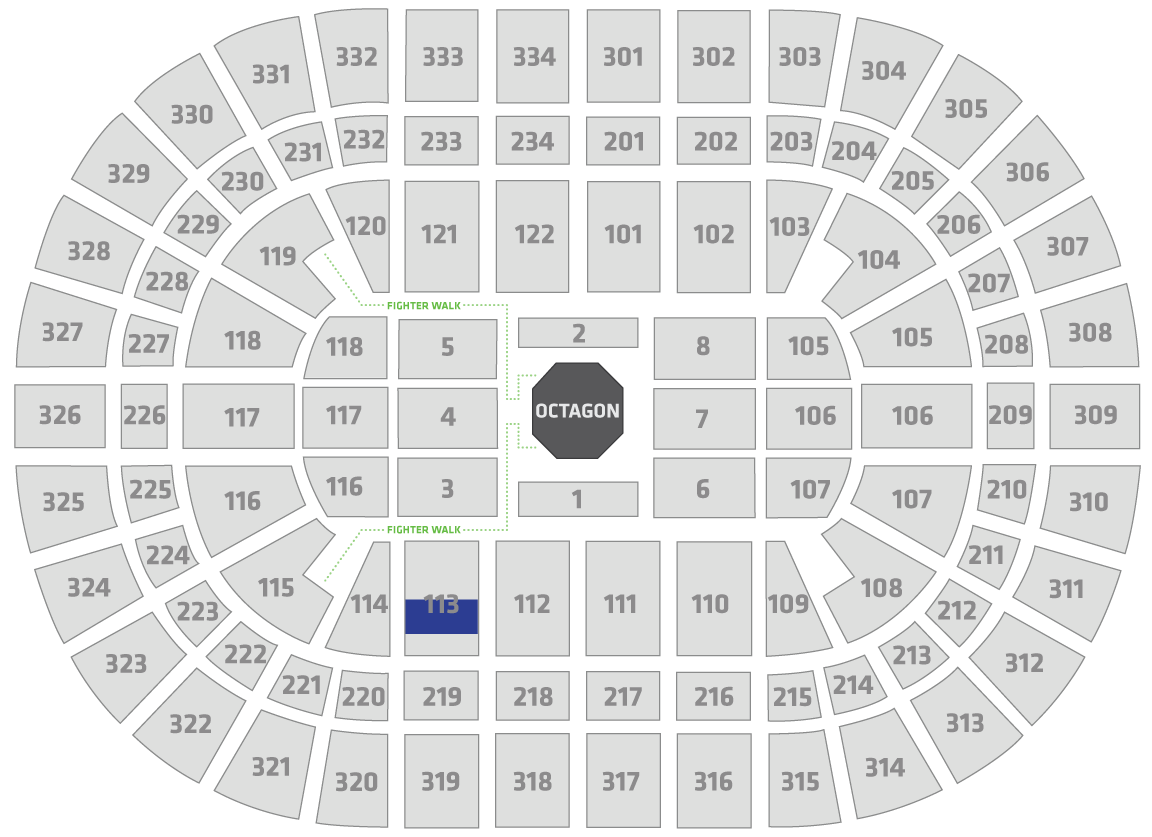 UFC 238 United Center Seating Chart Fan