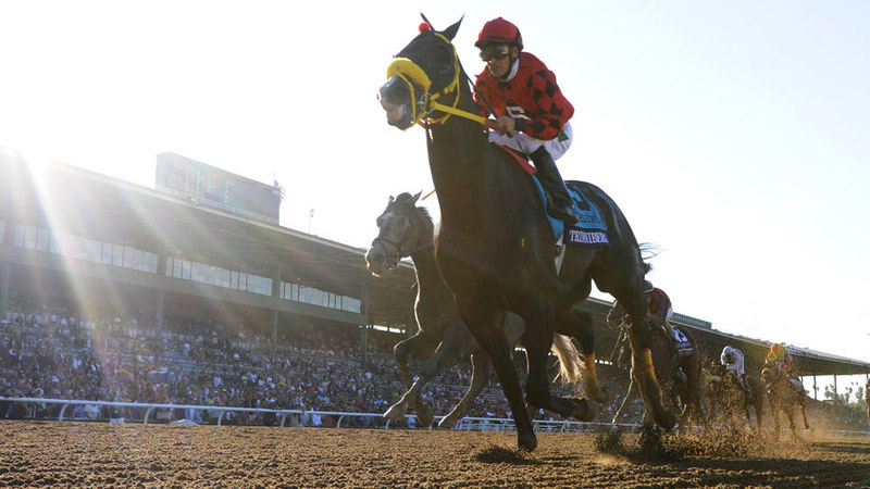 Breeders Cup Experiences Official Ticket Packages