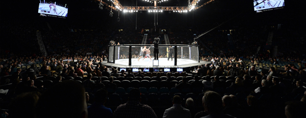 1877 ufc premier section