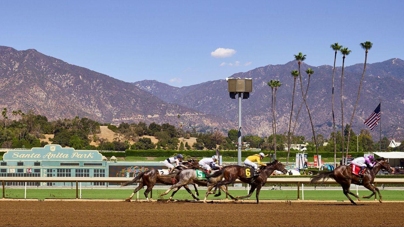 Breeders Cup Experiences Santa Anita Horse Racing QuintEvents 2