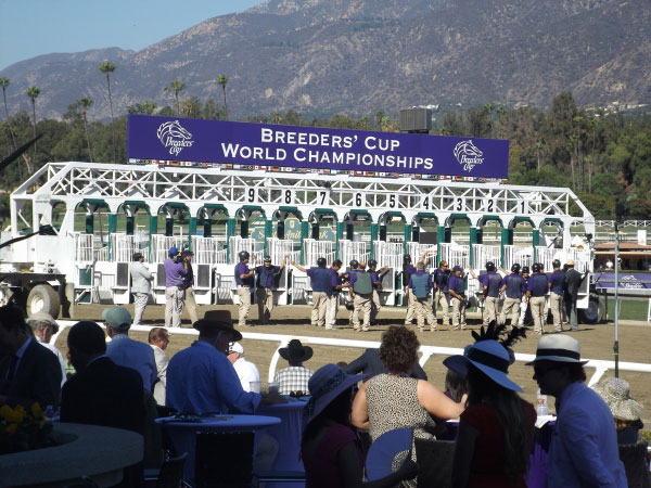 Breeders Cup Experiences Santa Anita View of the Track 21 resized 600