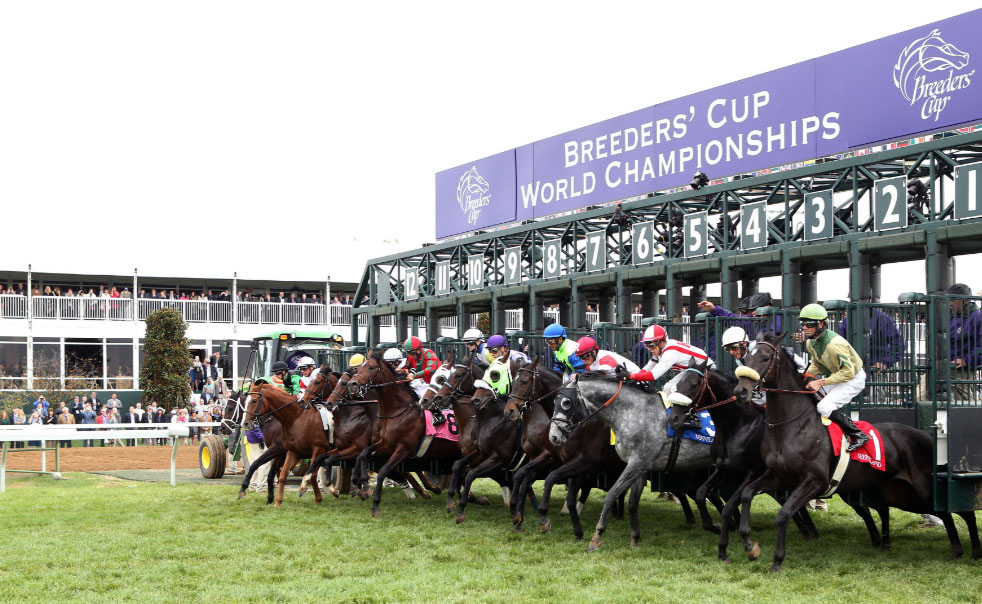 Breeders-Cup-Experiences-Santa-Anita-Close-up-of-Horses-Racing.jpg