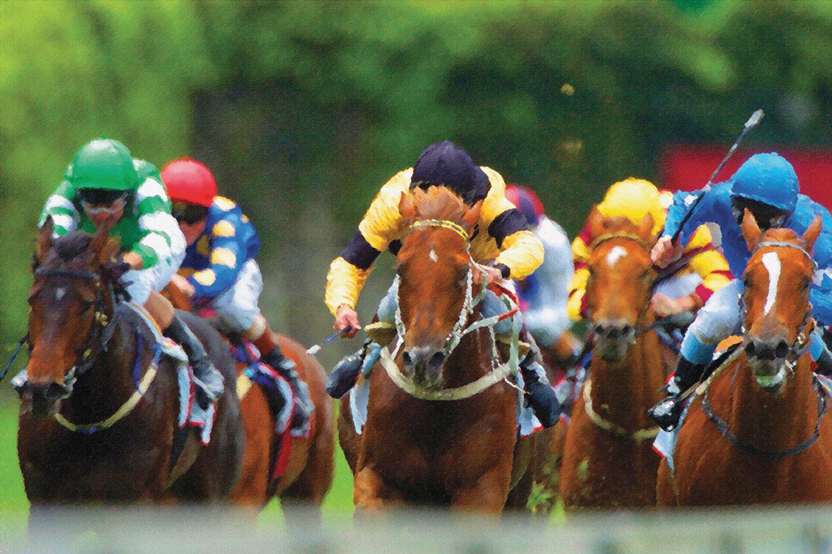 Derby-Experiences-Racing-002.jpg
