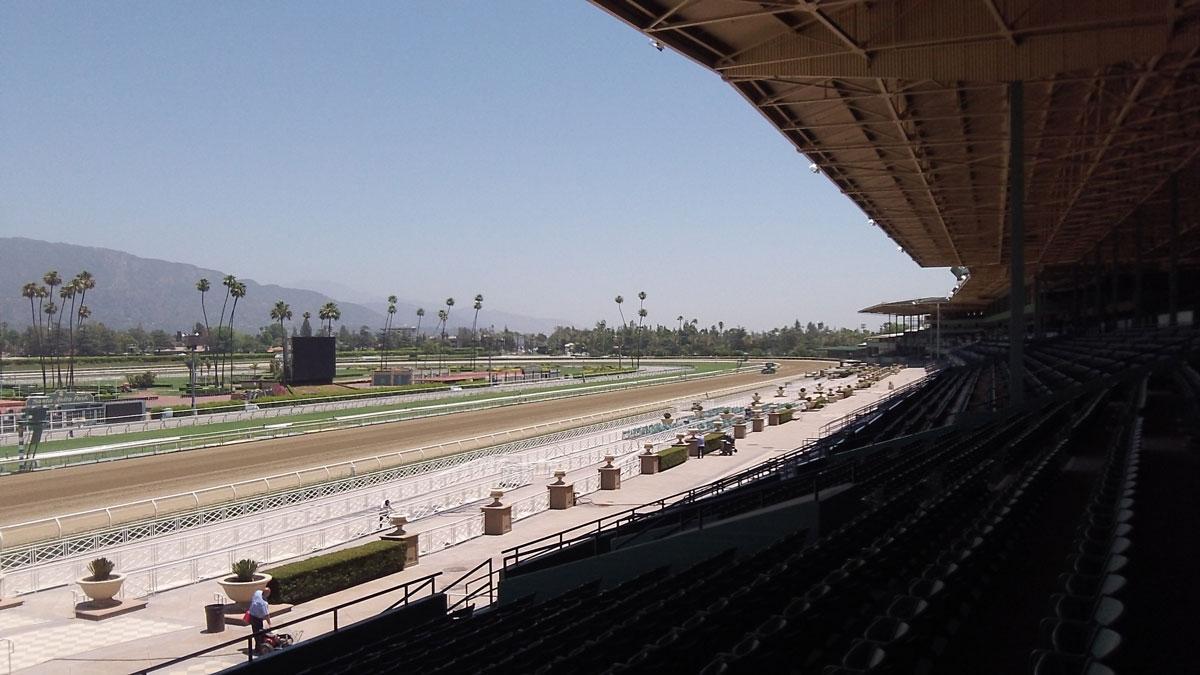 breeders cup experiences santa anita grandstand o q view quintevents