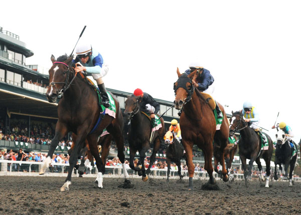 Breeders Cup Experiences Keeneland Aruna The Juddmonte Spinster Under Rail resized 600