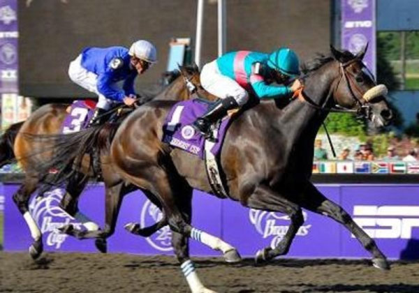 Breeders Cup Experiences Santa Anita Horse Racing QuintEvents 1 resized 600