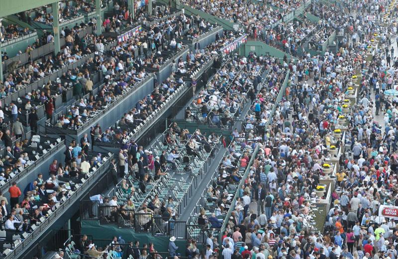 breeders cup experiences santa anita turf club box seats quintevents 6