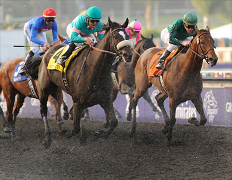 Breeders Cup Experiences Santa Anita Horse Racing QuintEvents 6