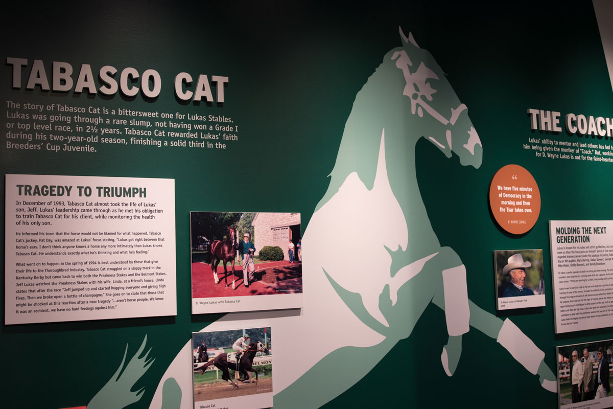 Tobasco Cat