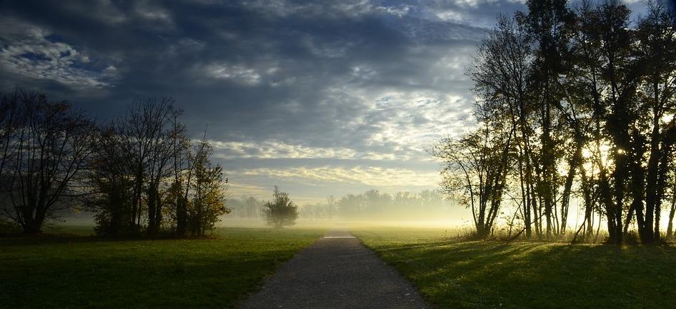 monza park dawn