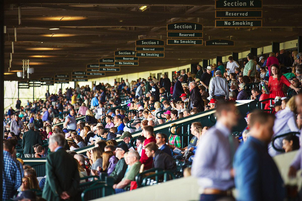 people in the breeders cup experience at the breeders cup world championships