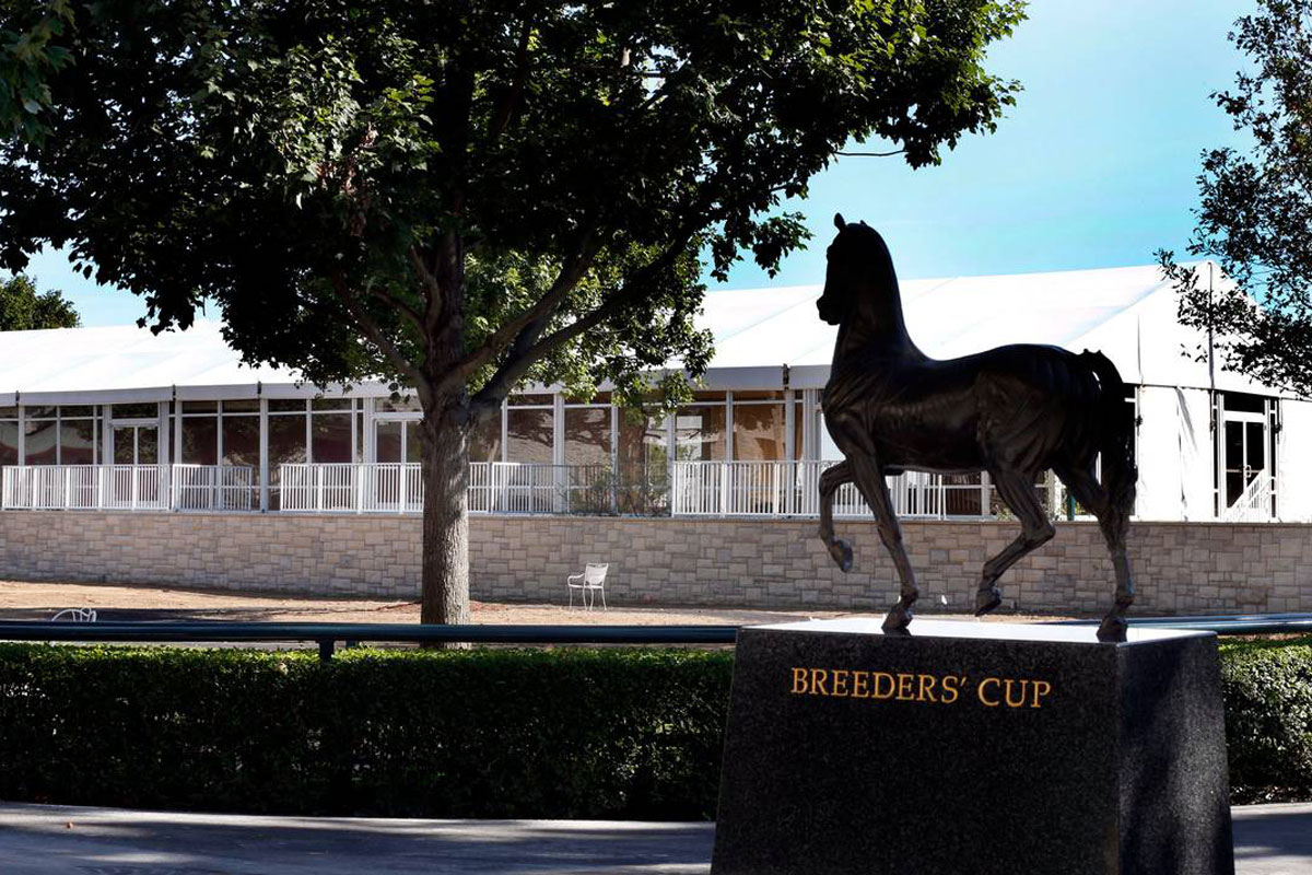 box seating at the breeders cup world championships