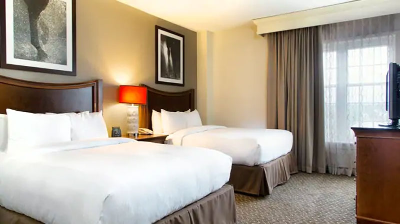Breeders' Cup Experiences accommodations DoubleTree Suites by Hilton Hotel Lexington bedroom