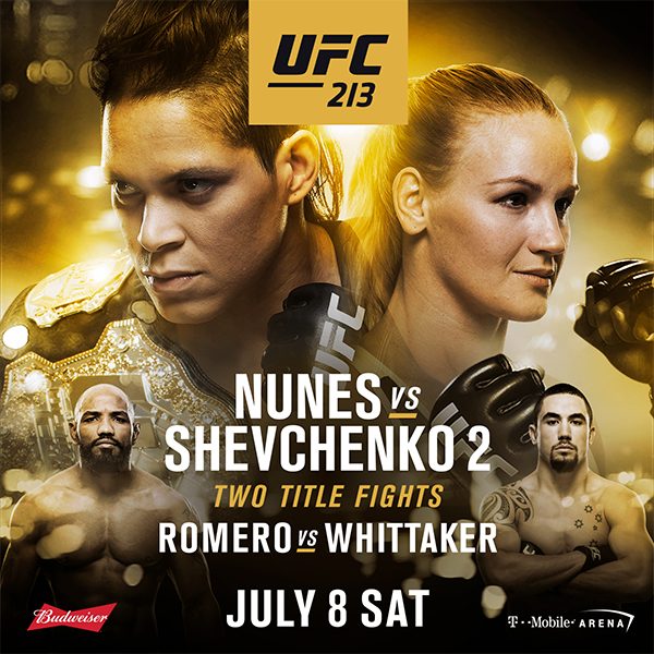 Image result for ufc 213